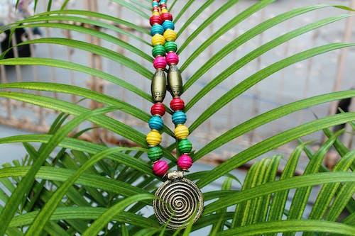 Foto d'estoc gratuïta de accessoris, arbre, artesania, colorit