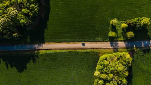 Foto profissional grátis de aéreo, altura, antena