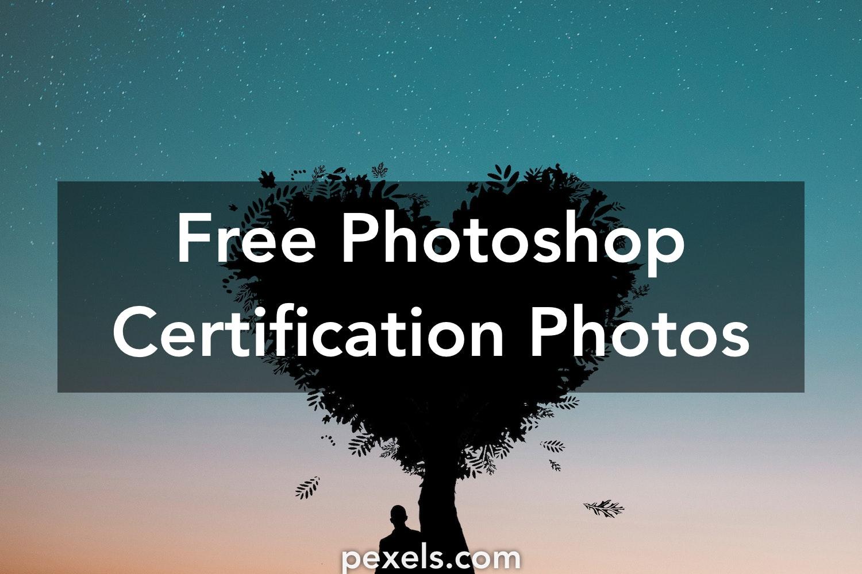 20 Great Photoshop Certification Photos Pexels Free Stock Photos
