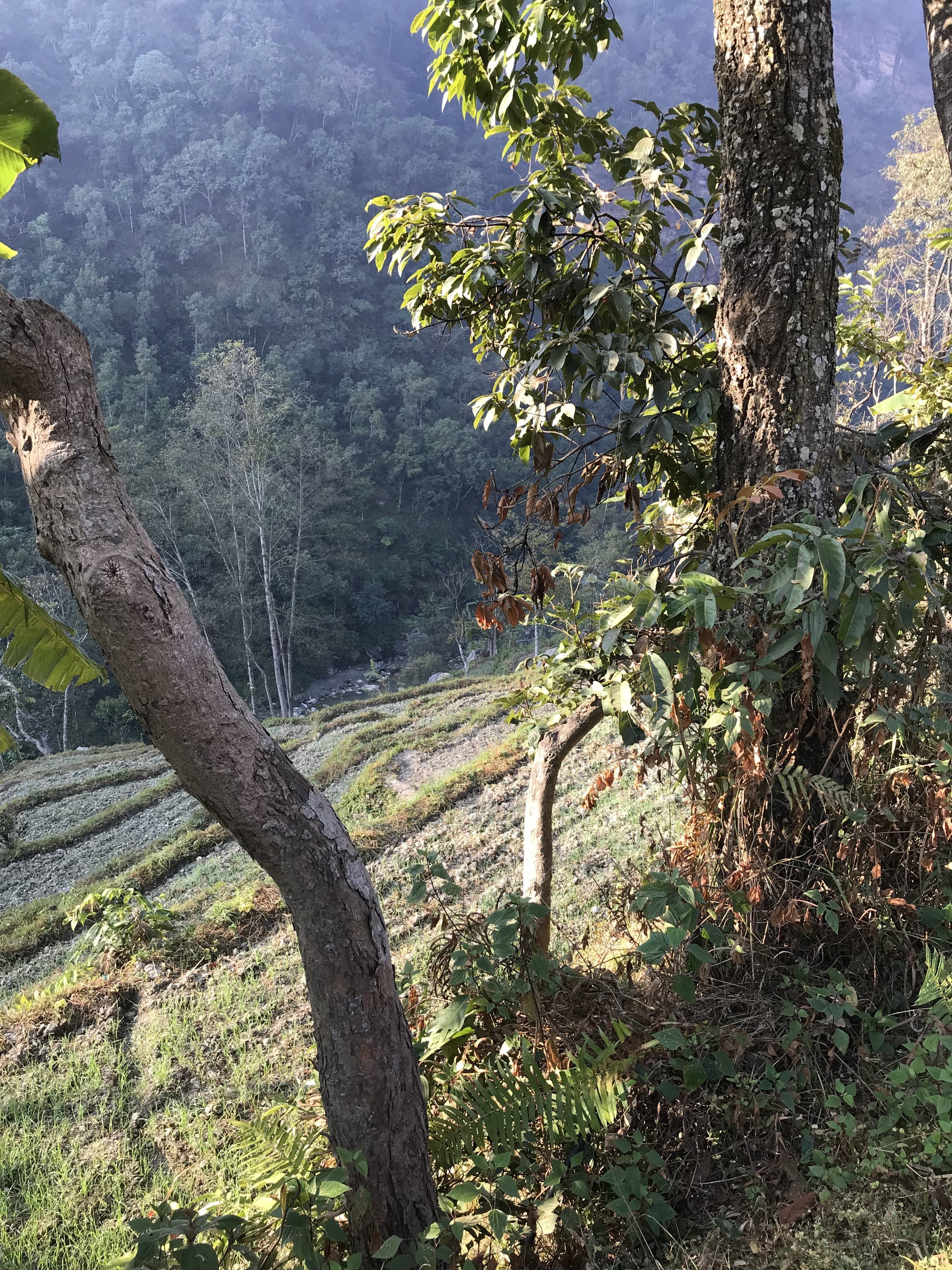 Free stock photo of Baglung West Nepal