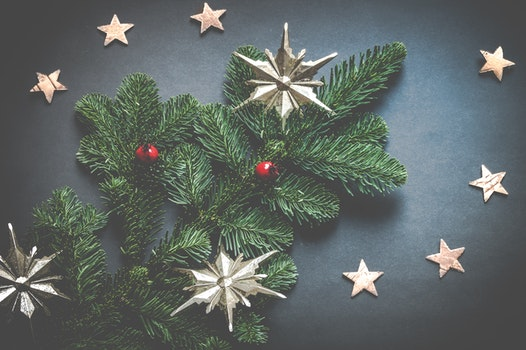 Free stock photo of leaves, stars, colorful, christmas
