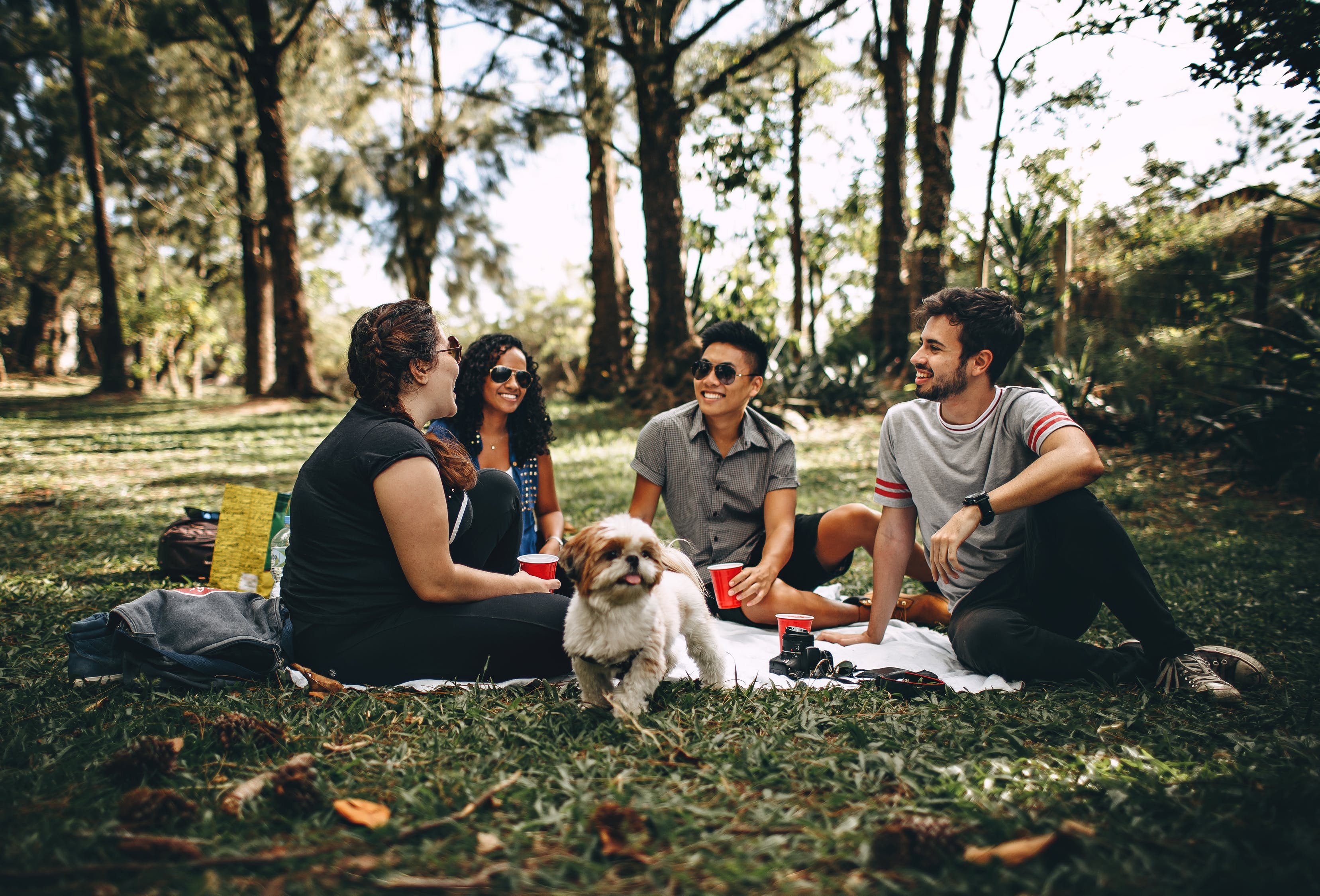 Group of people sitting> </p> <p> Once summer turns to autumn, people return to reality. The vacations are over, and everybody returns to their jobs. But who says that you need to wait for the summer or winter break to go on a trip? Obviously, you can only book so much time off work on an annual basis, but you don't even have to do that in order to go away. You could go on a weekend trip. It'd give you something to look forward to on a regular basis if you planned more weekend getaways with your buddies. So, with that idea in mind, these are some ideas regarding fun trips for you and your friends at weekends. </p> <p> Heading out on the open road. </p> <p> <a href=