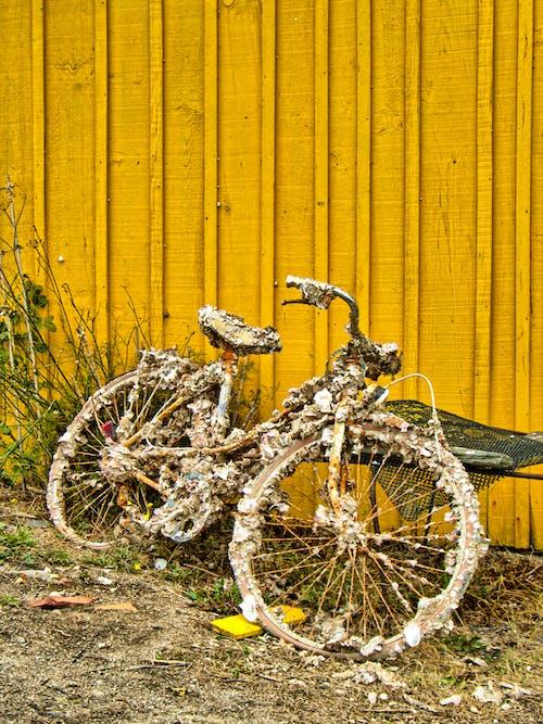 Kostenloses Stock Foto zu abstellraum, alles gelb, draußen