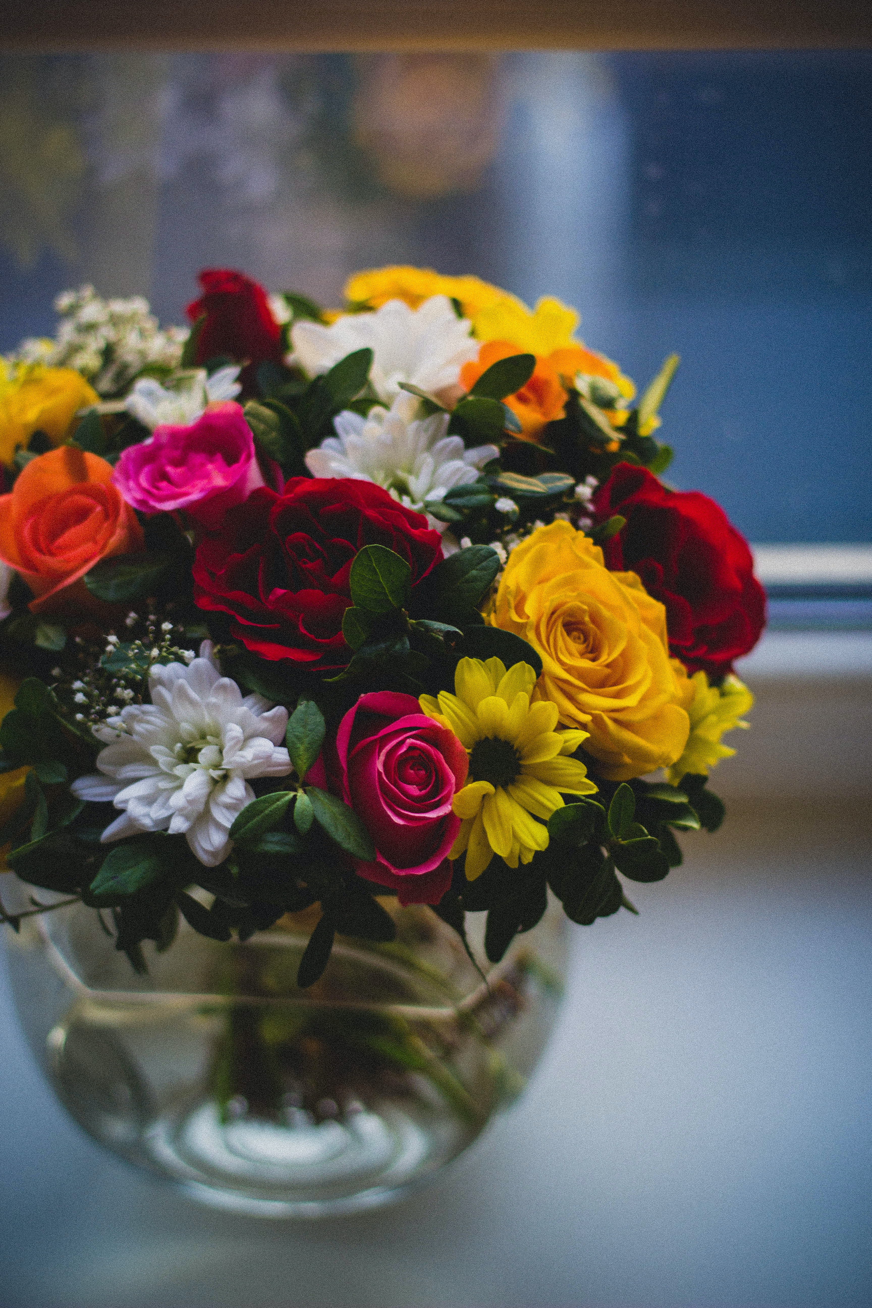 1000 interesting flower arrangements photos pexels free stock search for colors eg color blue mightylinksfo