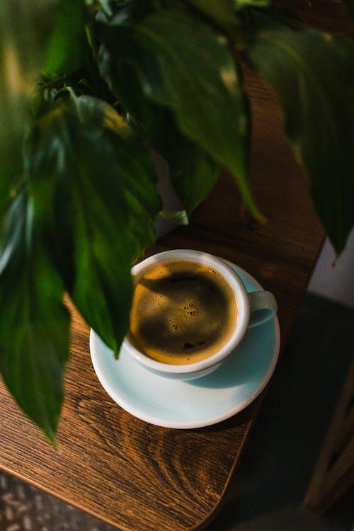 Foto profissional grátis de agradável, aroma, aromático
