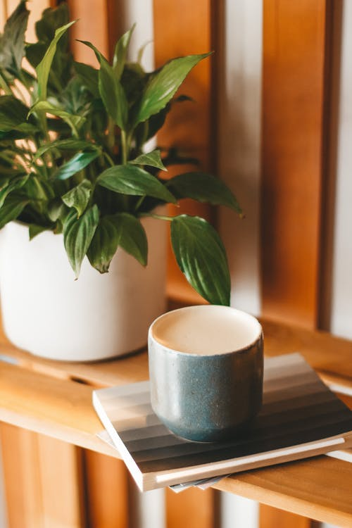 Ceramic mug with delicious fresh cappuccino served on copybook on wooden shelf near verdant houseplant