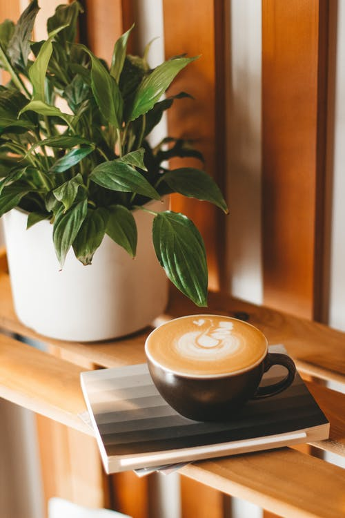 Sweet cappuccino with fluffy froth on wooden shelf