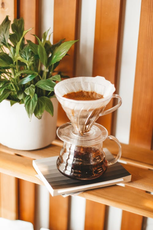 Alternative coffee maker chemex with brewing fragrant beverage placed on wooden shelf near potted lush plant