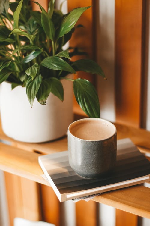 Ceramic mug of aromatic fresh cappuccino with froth served on wooden shelf near verdant houseplant
