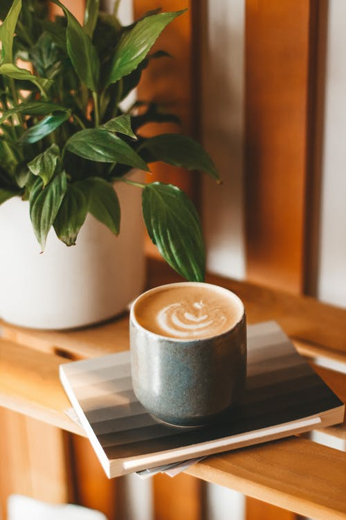 Ceramic mug of yummy latte with fluffy froth served on copybook on wooden shelf near potted houseplant