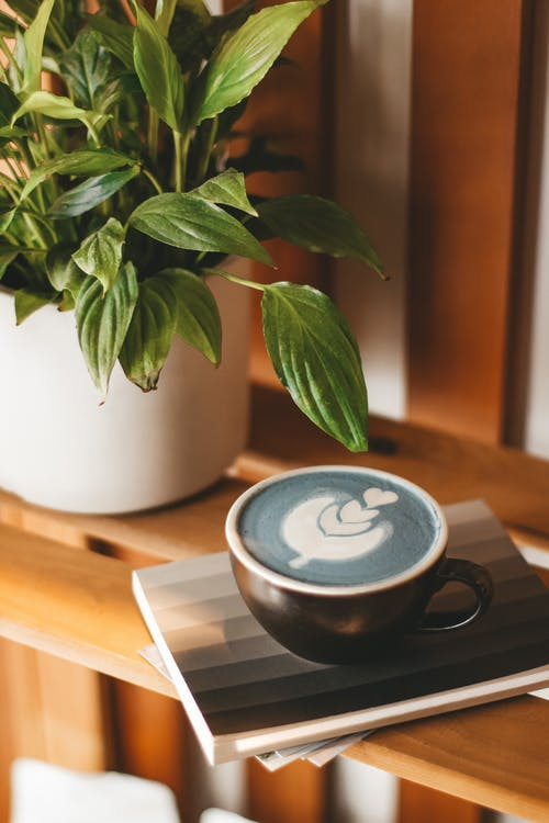Cup of blue cappuccino served on wooden shelf
