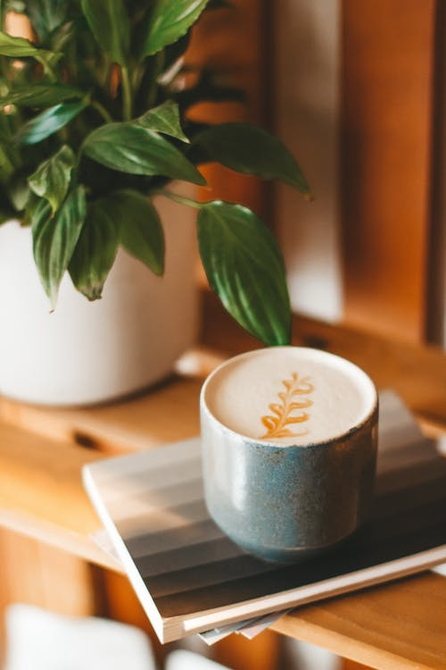 Ceramic mug of aromatic fresh cappuccino served on copybook on wooden shelf near verdant potted houseplant