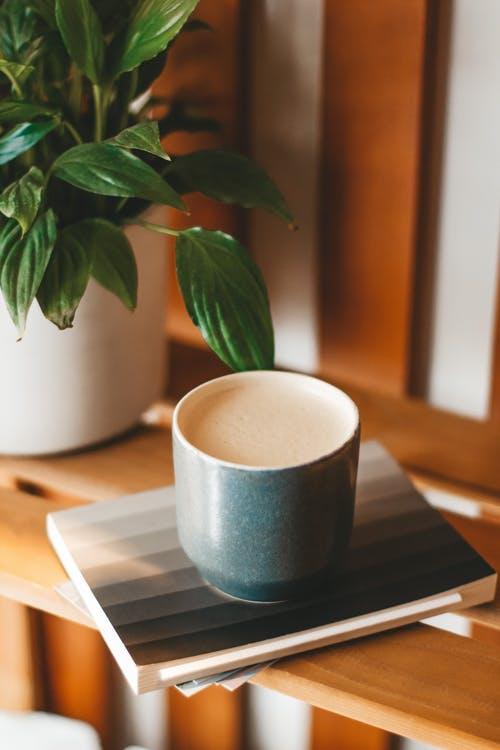 Delicious cappuccino served on wooden shelf near houseplant