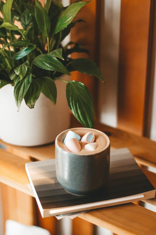 Delicious hot cappuccino topped with sweet marshmallows and served on wooden shelf near lush houseplant