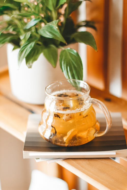 Glass teapot with freshly brewed fragrant green tea with herbs served on wooden shelf near potted houseplant