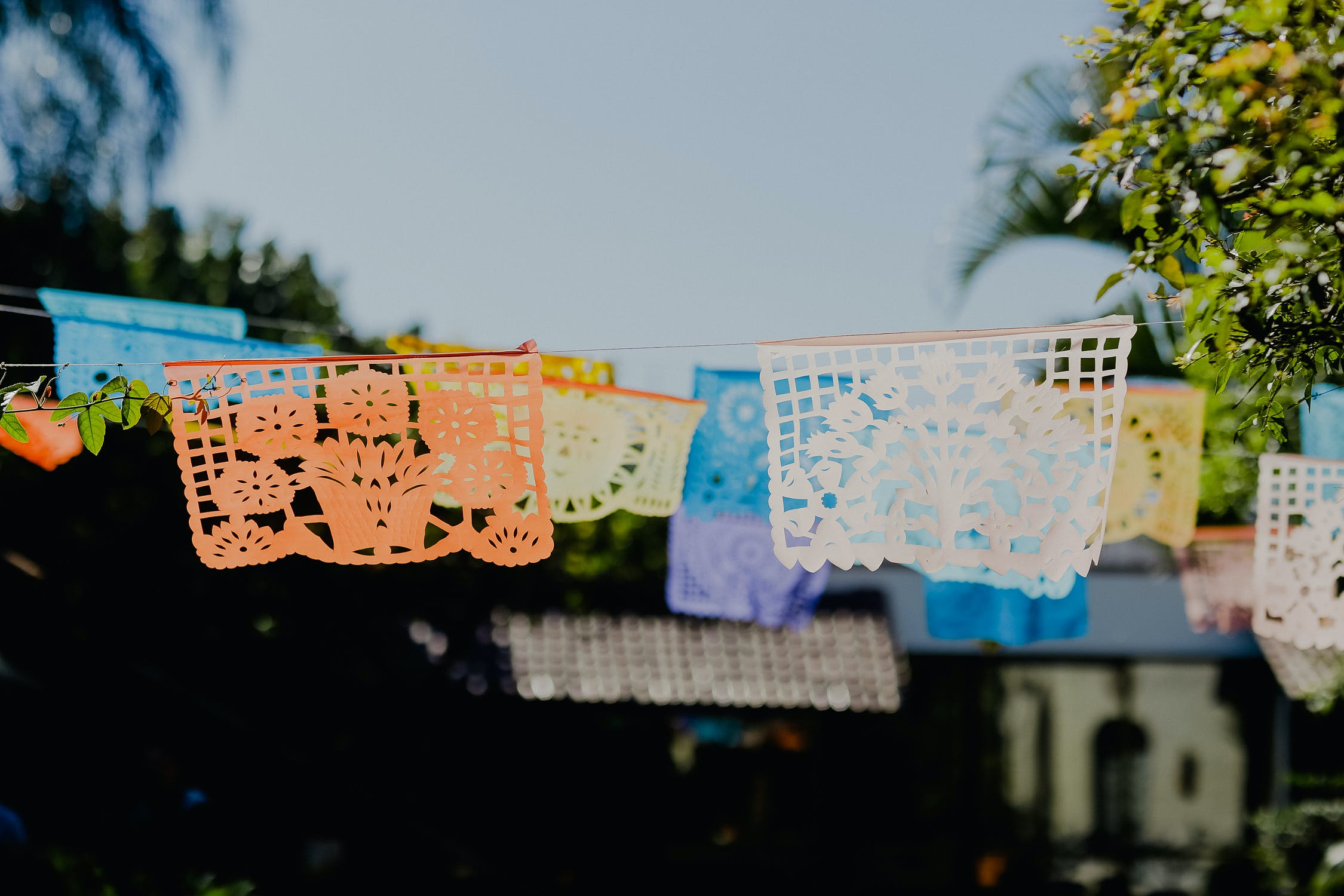 Free stock photo of día de muertos, mexican, mexico, papel picado