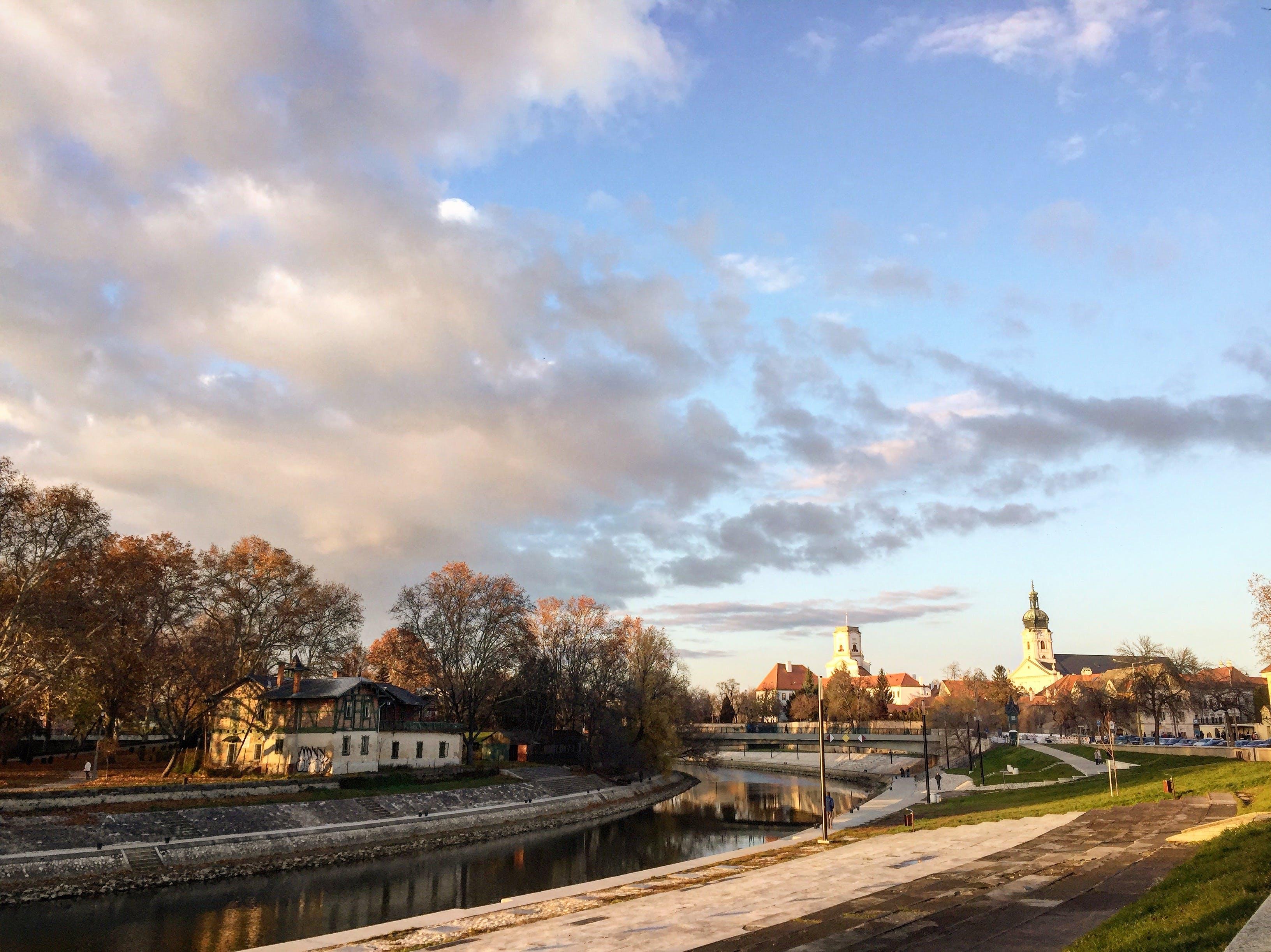 Free stock photo of autumn, autumn colours, blue sky, city
