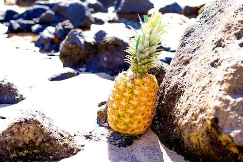 Kostenloses Stock Foto zu ananas, felsen