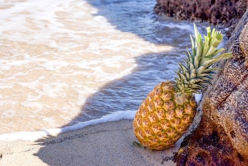 Ananas In Seashore Leunend Op Brown Rock