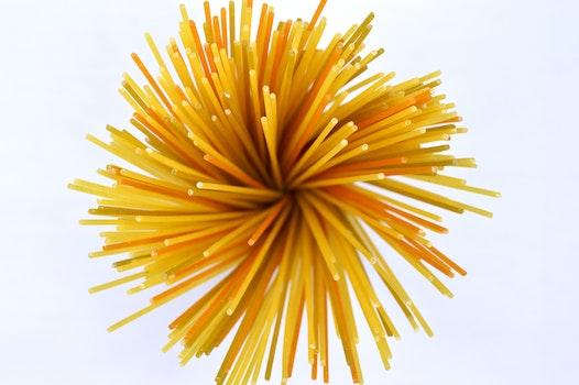Pasta Noddles Log