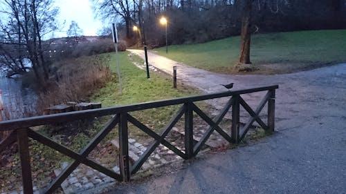 Kostnadsfri bild av kvällshimmel, staket, vinter