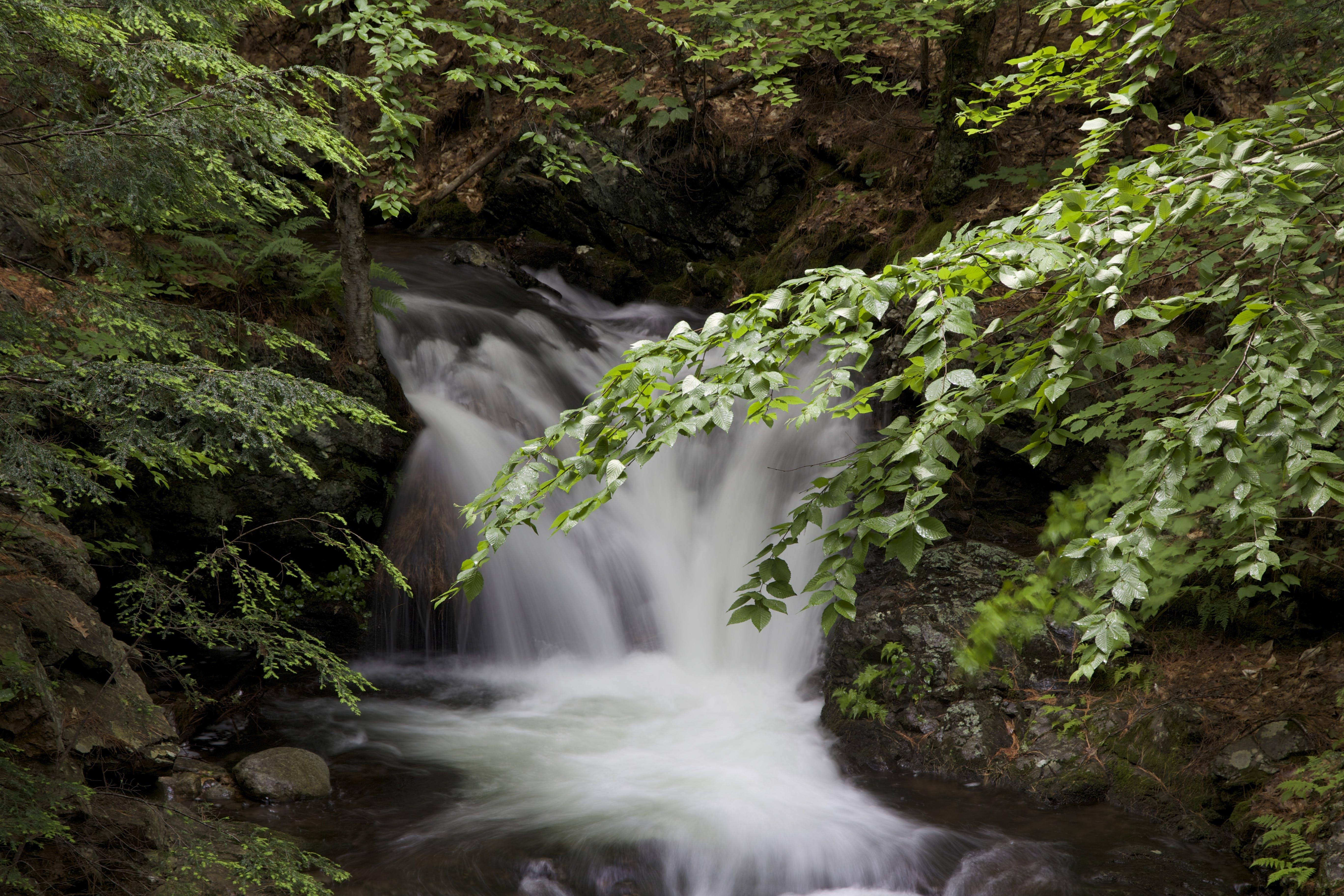 Free stock photo of stream, waterfall