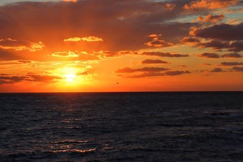 골든 아워, 구름, 바다의 무료 스톡 사진