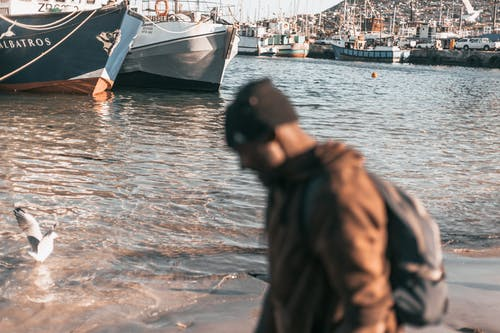 Free stock photo of Cape Town, fishing, harbour