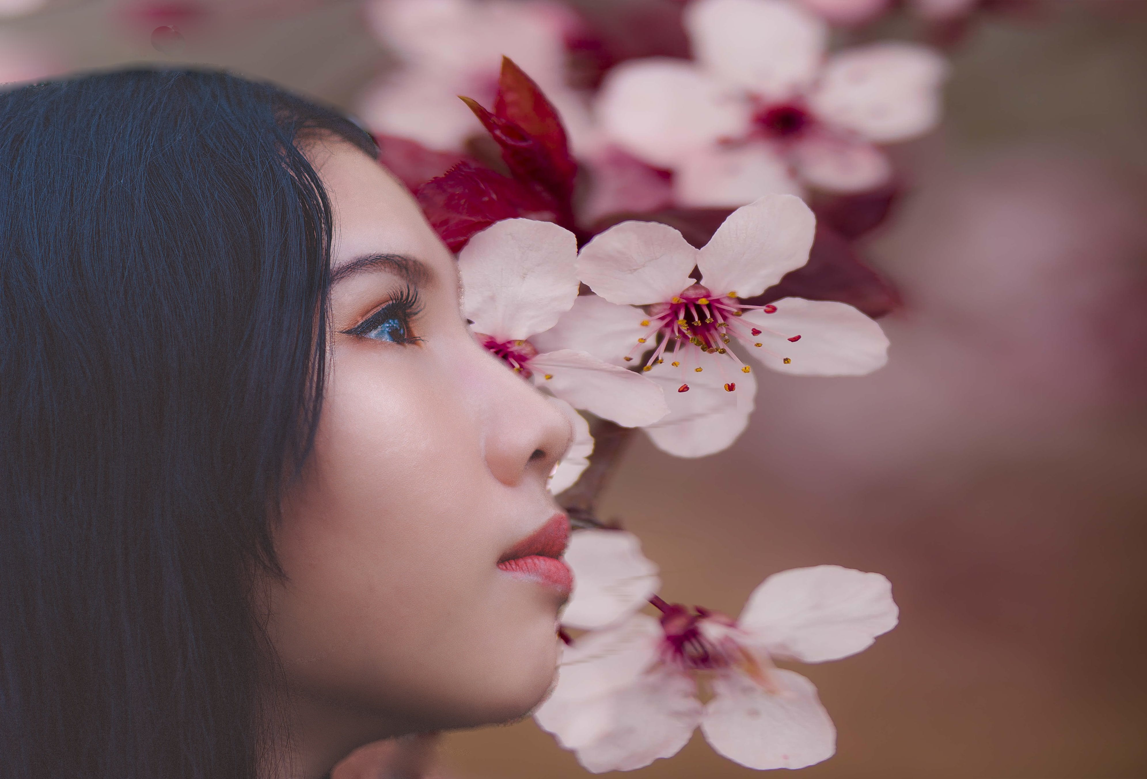 Woman Beside Cherry Blossoms