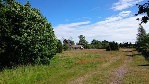 Kostnadsfri bild av blå himmel, landsväg, sommarvibbar