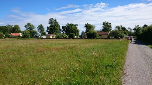 Kostnadsfri bild av blå himmel, lantställe, sommartid