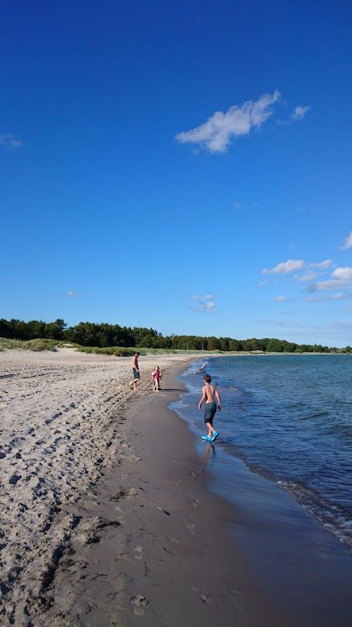 Kostnadsfri bild av blå skie, sandstrand, sommartid, vid havet