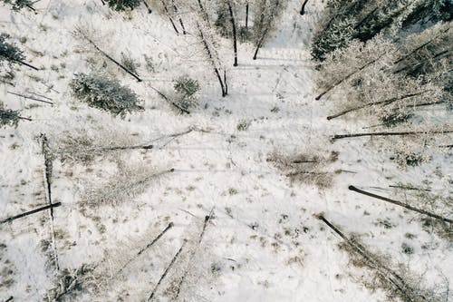 Kostnadsfri bild av flygperspektiv, frost, fryst