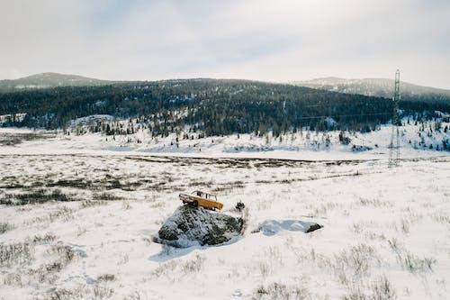겨울, 겨울 배경, 겨울 풍경의 무료 스톡 사진