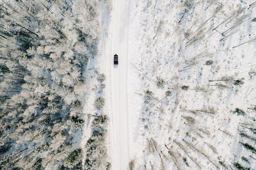 Kostnadsfri bild av äventyr, bil, bilresa
