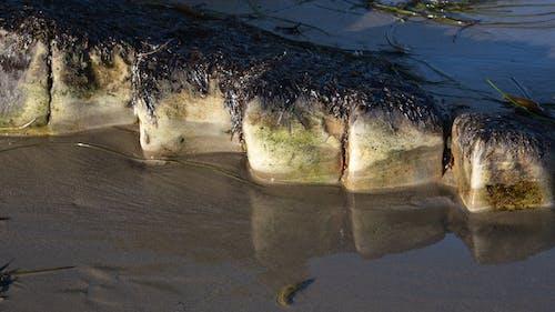 Gratis stockfoto met oceaan, rotsen, stenen