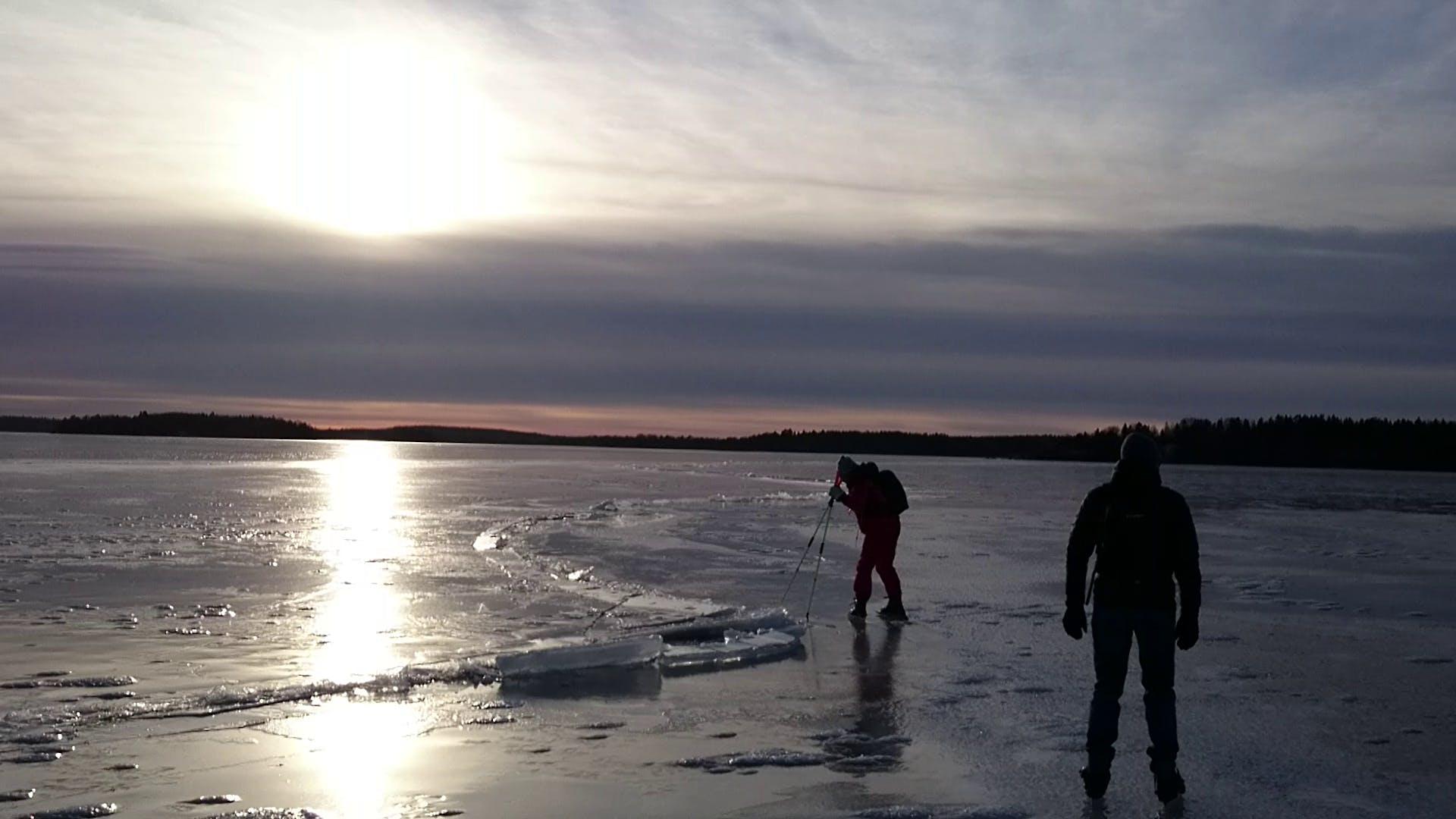 Free stock photo of ice, long-haul skates, winter