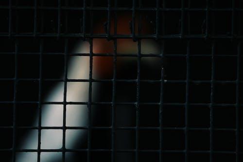Darmowe zdjęcie z galerii z ciemny, darktop, jasny, na zewnątrz
