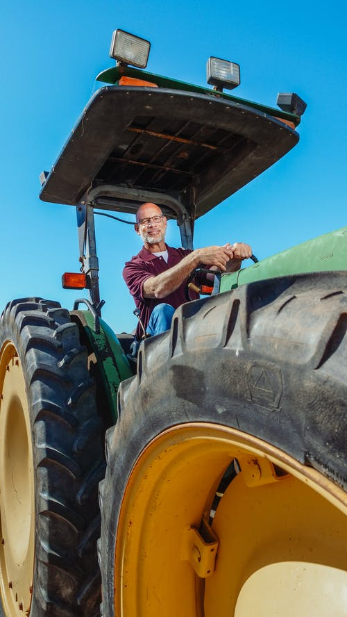 Free stock photo of agricultural, agriculture, batch