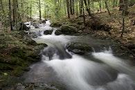 water, rocks, forest