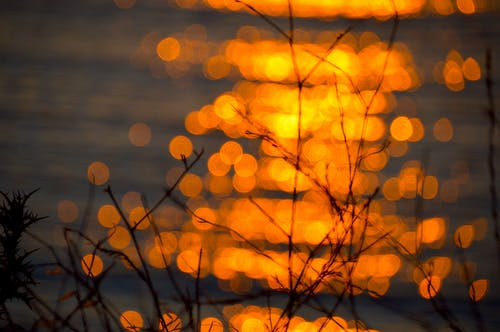 Free stock photo of golden sun, greece, Skopelos