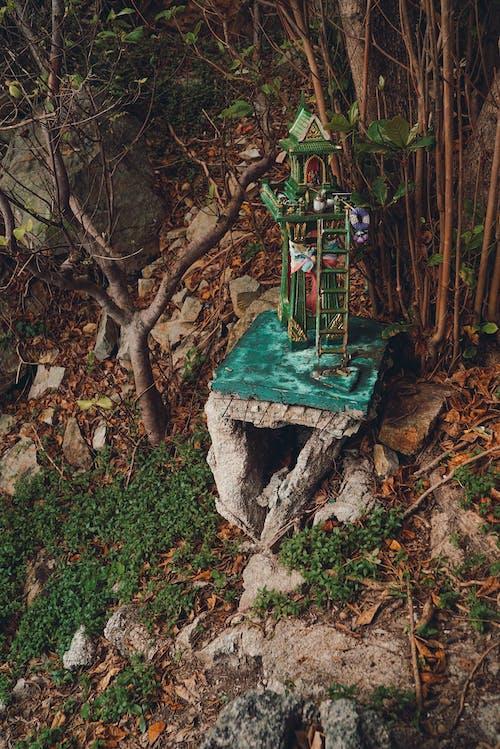 alm, 佛, 佛教, 佛陀 的 免费素材图片