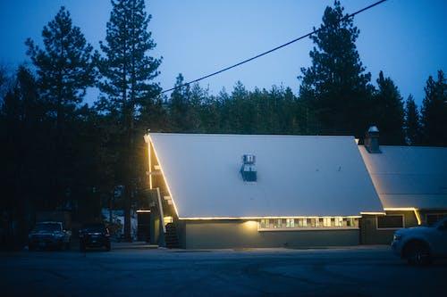 Imagine de stoc gratuită din acoperiș, amurg, arbore