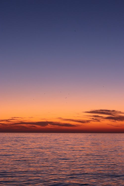 Scenic View of a Placid Sea during Sunset