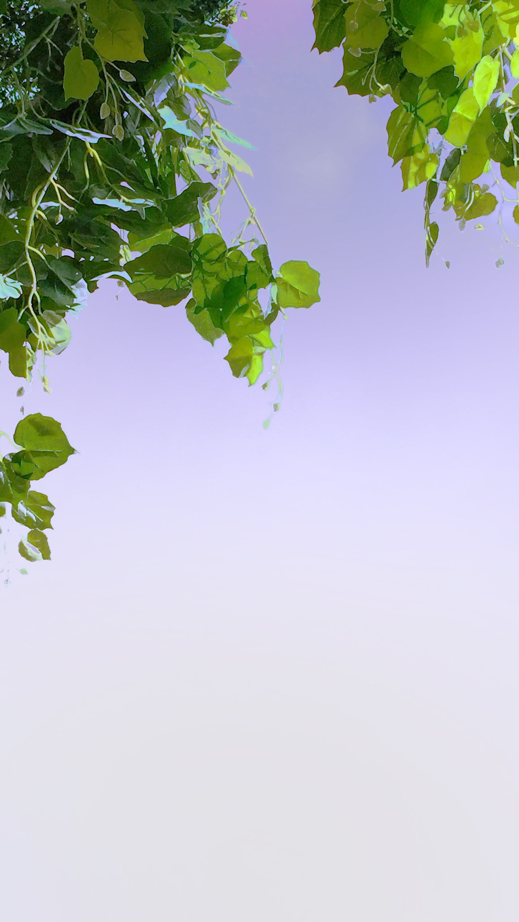Free stock photo of background, city, colors, nature