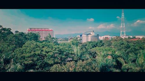亞洲女孩, 大學, 學院, 景觀 的 免费素材照片