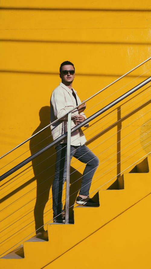 คลังภาพถ่ายฟรี ของ กลมกล่อมสีเหลือง, กลางวัน, กลางแจ้ง