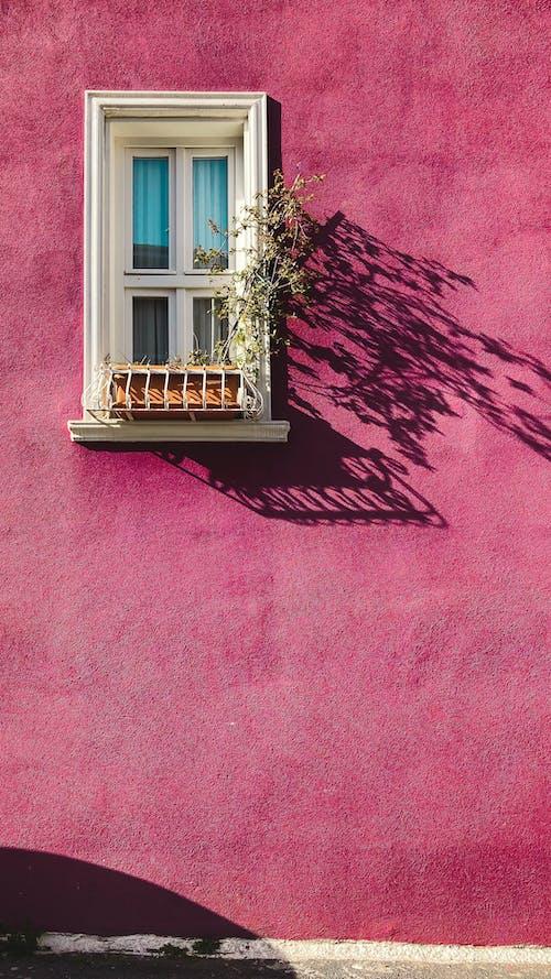アート, アンティーク, ピンクの無料の写真素材