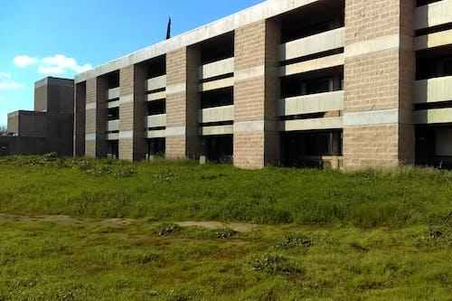 Fotos de stock gratuitas de césped, edificio, solitario, sombras