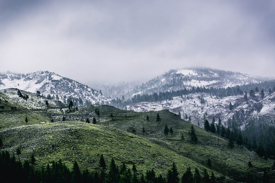 domb, ég, fák